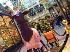 The @northernballet Tinkerbell Reindeer is pirouetting around @victoriaquarter. Just one of the Resplendant Reindeer on the #MagicalLeeds Reindeer Trail.  http://www.visitleeds.co.uk/things-to-do/Leeds-Reindeer-Trail.aspx