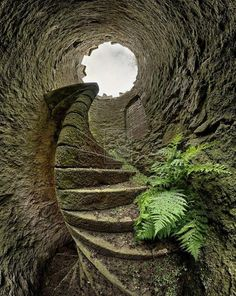 Keiths Tower, near Peterculter, Aberdeenshire, Scotland #amazing #beautiful http://architecturia.tumblr.com/