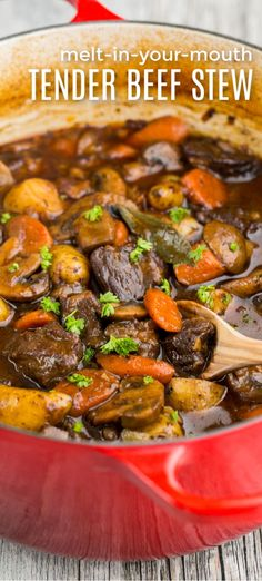 This beef stew is hearty and loaded with melt-in-your-mouth tender morsels of beef. The best beef stew and it's feel good comfort food! #beefstew #stew #beef #beefstewrecipe #natashaskitchen