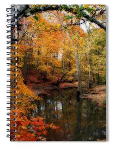 """This x spiral notebook features the artwork """"In Dreams Of Autumn"""" by Kay Novy on the cover and includes 120 lined pages for your notes and greatest thoughts. Notebooks For Sale, Image Gifts, Beautiful Images, Wisconsin, Fine Art America, Art Photography, Spiral Notebooks, Autumn, Dreams"""