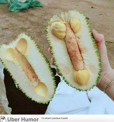 My sister just cut off this jackfruit Fruits And Veggies, Vegetables, Ipoh, Funny Posters, How To Make Shorts, Jokes Quotes, Honeydew, Creative Art, Pineapple
