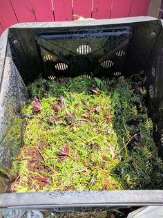 Compost Bin#compost#gardening#