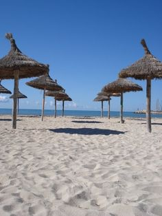 Visit a beach on Majorca, Alcudia has these great parasols lined up waiting for you