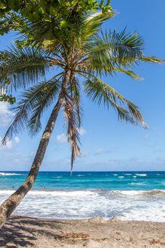 Hamoa Beach along the Road to Hana in Maui, Hawaii