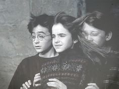 The Gryffindor Trio-Harry Potter, Hermione Granger, Ron Weasley-the hair is so funny Harry Potter World, Blaise Harry Potter, Images Harry Potter, Arte Do Harry Potter, Harry Potter Cast, Harry Potter Love, Harry Potter Universal, Harry Potter Characters, Harry And Hermione