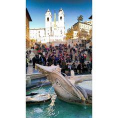 """""""Mi piace"""": 172, commenti: 5 - tacchinoalcarrie (@andoniopre) su Instagram: """"Forse prenderò un tram che va dritto alle Galapagos... . . . #rome #roma #italianplaces…"""""""