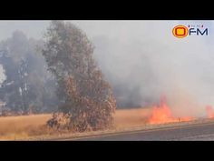 Veld Fires raging in Free State 24. August, Free State, Rage, Country Roads, Youtube