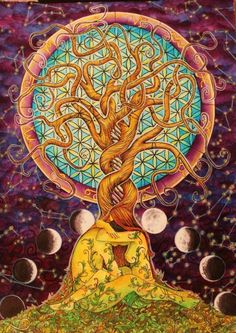 tree of life, moon phases, flower of life