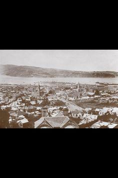 View of Dunedin, New Zealand 1880s.