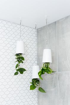 The Block NZ – honeycomb tiles, other pics from this one too. Blissful bathrooms... and a lesson in grouting | Habitat by Resene