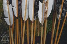 Intentional parenting, 5 Simple steps, Launching children like arrows. Psalm 127 4, Baby Grows, Bushcraft, Garden Tools, Growing Up, Parenting, Children, Knifes, Archery