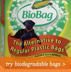 try biodegradable bags