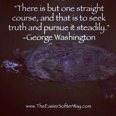 #turtle #quote #truth #belief #faith #georgewashington #inspiringquote #famousquote #wisdom #wise
