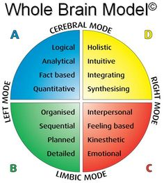 INSTRUCTIONAL DESIGN Learning Theories   Herrmann's Brain Dominance Index (HBDI) www.hbdi.com   Whole Brain Thinking   Accelerated Learning   CPLP