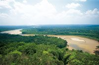 Los ríos de aguas blancas, con su enorme carga de sedimentos, forman amplias playas arenosas. Río Guaviare en el límite de la selva de trans...