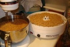 How to Make Sprouted Flour - Cultured Food Life