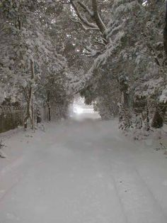 Snow at beautiful Ocracoke, NC...I fell in love all over again with Ocracoke.