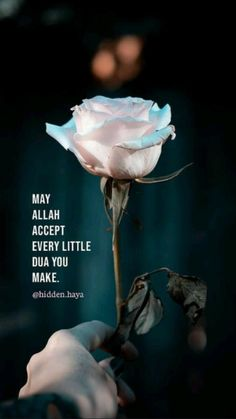 Beautiful Quotes About Allah, Quran Quotes Love, Quran Quotes Inspirational, Islamic Love Quotes, Prayer Quotes, Religious Quotes, Allah Quotes, Good Morning Roses, Good Morning Picture