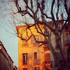 a #fairytail indeed #tbt #sunset #dusk #tree #sky #light #moodoftheday