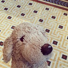 Yes I even like the floors in the NEUES MUSEUM  #details #neuesmuseumberlin #floor #plushiesofinstagram #dogsofinstgram #hundeliebe #detailliebe #fluffy #fff #fluffylife #fluffylife #plushies #kuscheltierliebe #lookhere
