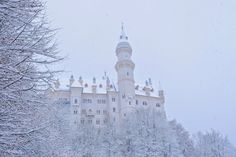It's so pink: Fairy tail alive in Bavaria