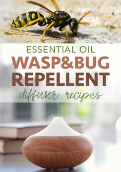 Essential Oil Wasp Repellent for Your Diffuser - Five Spot Green Living