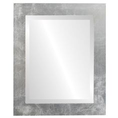 Rectangle Beveled Wall Mirror for Home Decor - Cafe Style - Silver Leaf with Brown Antique - outside dimensions Wall Mounted Mirror, Framed Mirrors, Wall Mirror, Contemporary Frames, Contemporary Style, Antique Frames, Antique Silver, Fake Plants Decor, Thing 1
