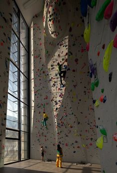 Best climbing gym images bouldering climbing mountaineering