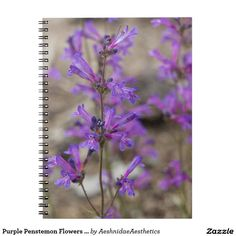 Purple Penstemon Flowers Notebook