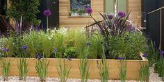 Moderní i venkovská předzahrádka: Které rostliny vybrat?