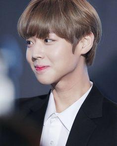박지훈 워너원 Park Jihoon Wanna One Ji Sung, Seong, Korean Boy Bands, Bae, Jingle Bell, Pride, Kpop, Gay Pride