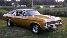 1974 Nova Ss 1974 Chevrolet Nova Used Chevrolet Nova