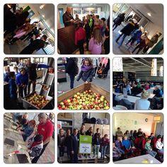 Dag van de #Duurzaamheid groot succes met de basisscholen uit Westervoort, Duiven en #Zevenaar #dvdd13 #Groeneallianties. Donderdag 10 oktober 2013. via twitter @CommJoelle.