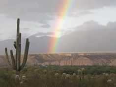 Rainbow over Kielberg Canyon and San Pedro River Valley; SE of San Manuel, AZ