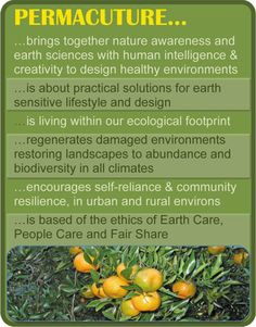 button-permaculture-2