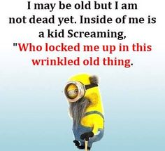 Absolutely how I feel. Minions Images, Minions Love, Minions Quotes, Smart Quotes, Cute Quotes, Funny Quotes, Funny As Hell, Funny Thoughts, Funny Facts
