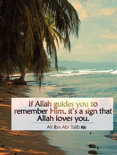 Allah Loves You, Imam Ali, Islamic Quotes, Love You, Signs, Beach, Water, Outdoor, Gripe Water