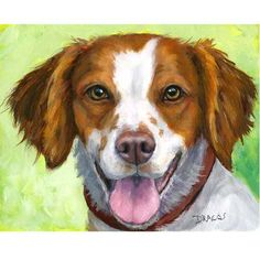 Brittany Spaniel Dog Art 8x10 Print Painting by by DottieDracos, $12.00
