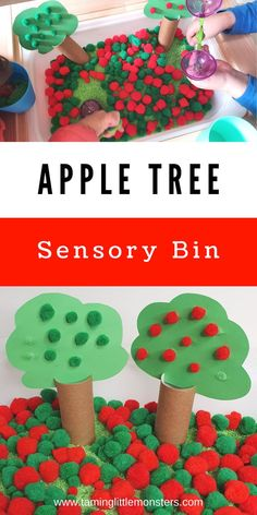 Learn how to make an Apple tree sensory bin. This is a fun and easy sensory activity for Fall and Autumn. Toddlers, preschoolers and kindergarten will love this beautiful fall play idea. #Fall #autumn #sensory #toddlers #prescholers #kindergartners Sensory Bins, Sensory Activities, Sensory Play, Toddler Activities, Projects For Kids, Art Projects, Preschool Classroom, Kindergarten, Autumn Activities For Kids