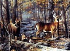 "A Buck and a couple of Doe's are alerted by sounds or movement as they stand along the stream Image Size 16W"" x 12""H"
