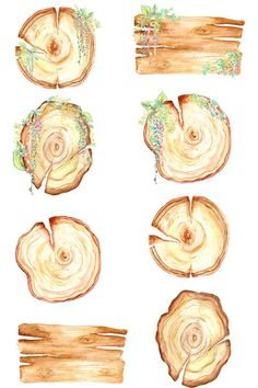 wood slices watercolor clipart wooden boards wood frames image 1 Watercolor On Wood, Watercolor Paintings, Watercolor Wedding, Wood Png, Wooden Slices, Clip Art, Printable Stickers, Watercolor Illustration, Artsy