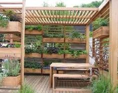 A vertical vegetable garden