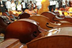90 Kontrabass Orchestra--pure genius