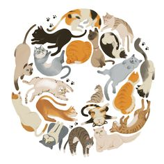 Cats by wonho jung, via behance кити cat drawing, cats, animal drawings. Crazy Cat Lady, Crazy Cats, I Love Cats, Cute Cats, Adorable Kittens, Gato Anime, Cat Drawing, Cats And Kittens, Cats Meowing