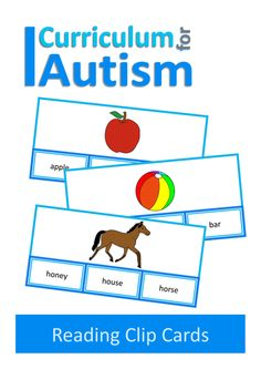 Reading Nouns, Sight Words, Clip Cards, Autism, Special Education, ABA