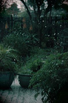 A quiet, rainy day