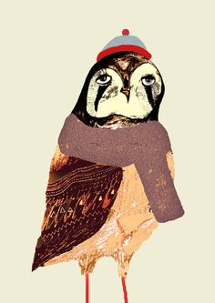The Falcon  by Ashley Percival