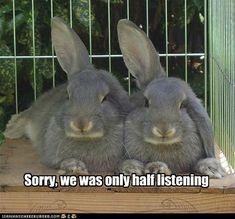 Half Listening