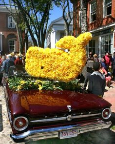 Nantucket Daffodil Festival: Nantucket is glorious on any day year-round, but we do love how the community throws a party that's fun for locals, overnight guests, and day-trippers. Everything is free and open to the public. And there's so much to do: tours, workshops, a weekend-long scavenger hunt, special shopping events, a flower show, a 5K, and parades, parades, parades. Photo: Michael Galvin/Nantucket Chamber of Commerce Coastalliving.com