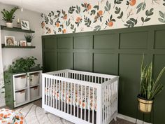 Instead of using wallpaper, I painted the pattern to create a clementine nursery accent wall! Green Accent Walls, Accent Wall Colors, Green Accents, Nursery Themes, Nursery Room, Girl Nursery, Elephant Nursery, Nursery Office, Orange Nursery